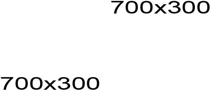 Duis autem vel eum iriure dolor in hendrerit 700x300