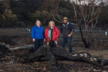 Volkswagen donates $1 million for reforestation in Australia